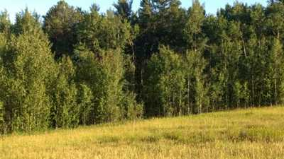 #3-51227 RGE RD 270 RD,  E4133466, Rural Parkland County,  for sale, , Leo Weel, RE/MAX Four Seasons Realty Ltd., Brokerage*
