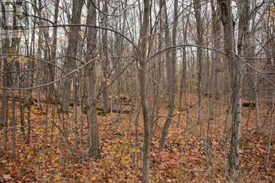 305 Coons RD # Parcel 1,  K20006975, Rideau Lakes,  for sale, , Laurel Amey, RE/MAX RISE EXECUTIVES, BROKERAGE*