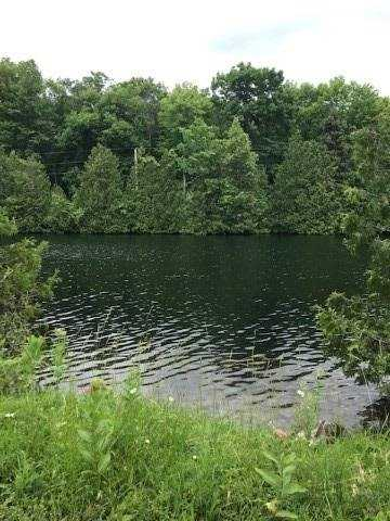 0 Trent Canal Rd,  X5286263, Kawartha Lakes,  for sale, , Anahi  Pintos, RE/MAX PREMIER INC. Brokerage*